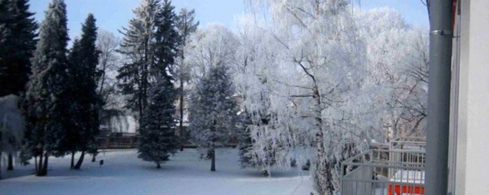 Park - Zimní pohled